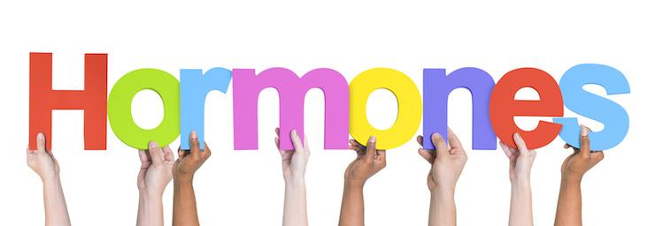 How Hormones Affect Weight Loss in Women - Group of Multiethnic Hands Holding Hormones