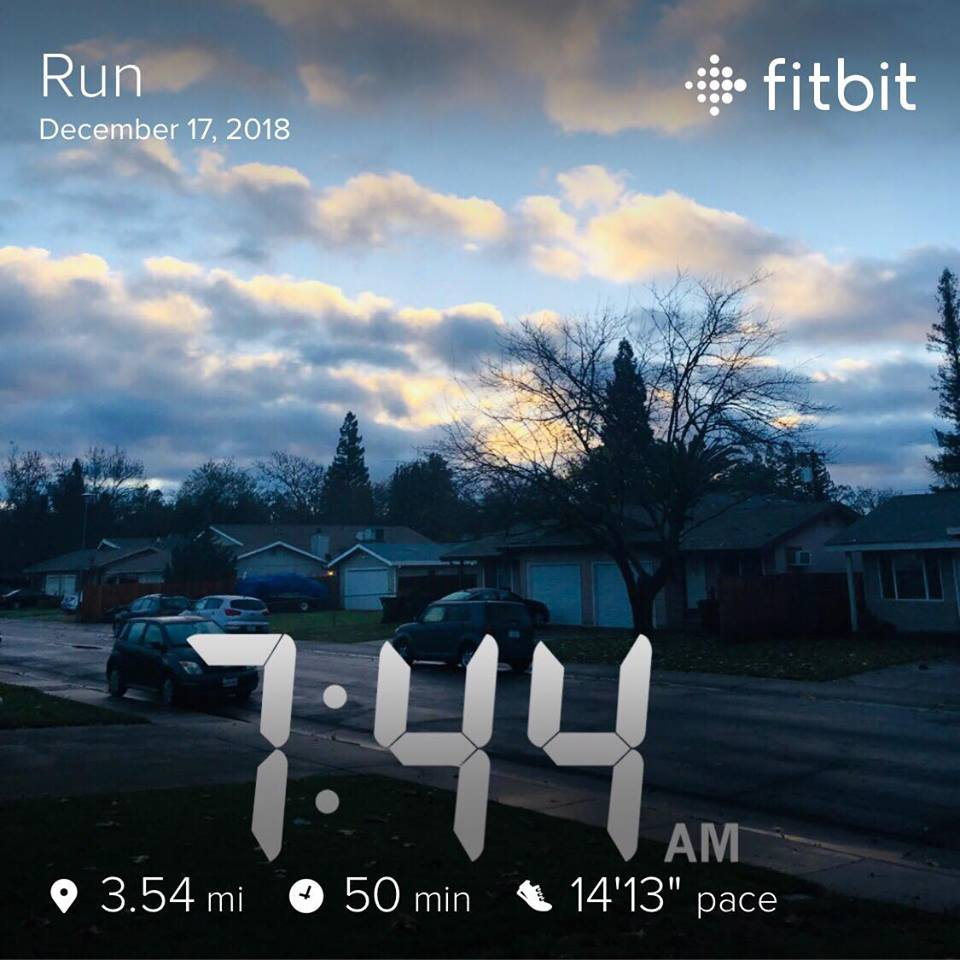 Fitbit run results